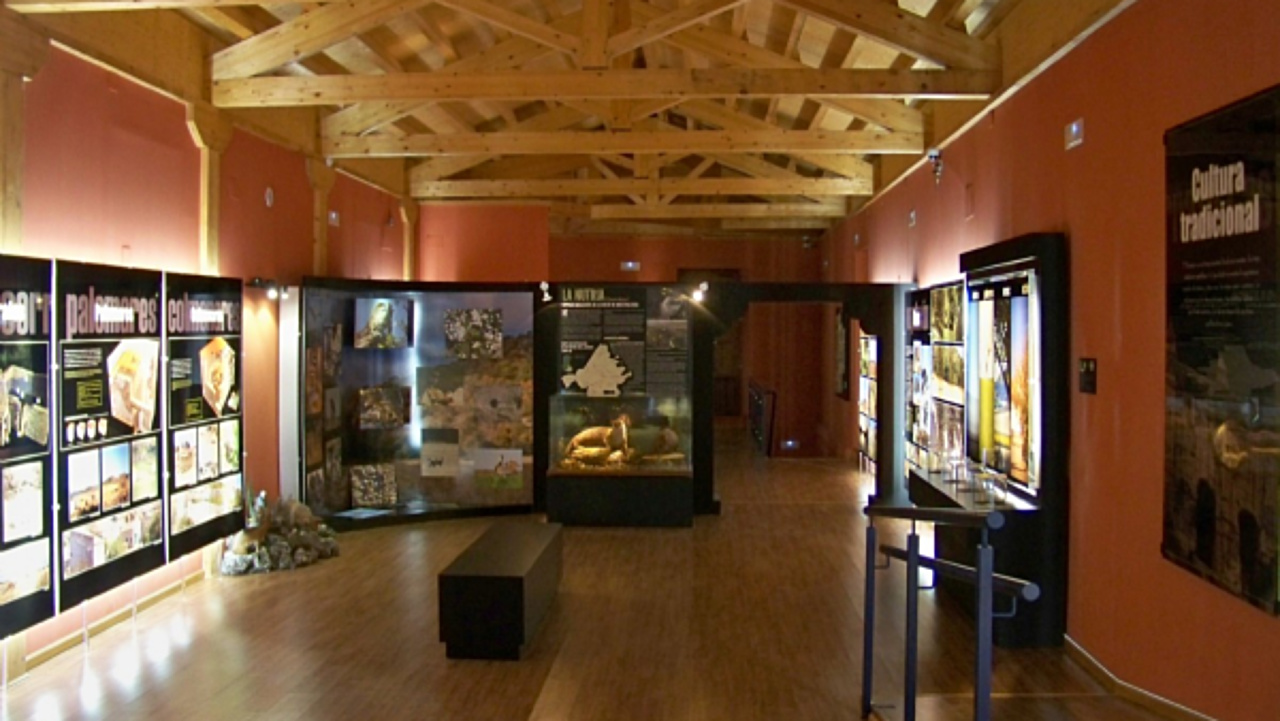 Museum of the Cerrato in Beltanás
